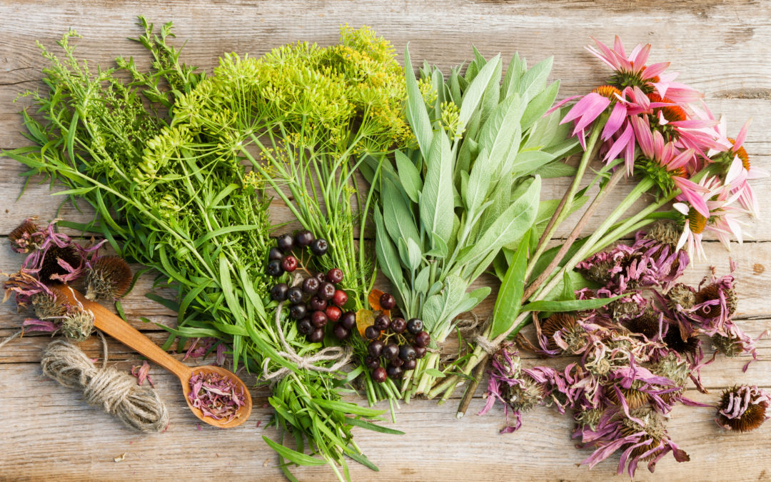 How to feel better this winter – natural medicines to soothea sore throat and ease a cough